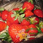 Как заморозить ягоды на зиму – 3 способа